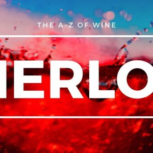 What is MERLOT - Everything you need to know about this popular Global grape.