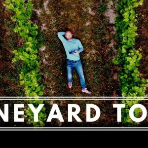 VINEYARD TOUR  - A Day at ALBURY VINEYARDS, UK. Interview with Owner and Vineyard Manager