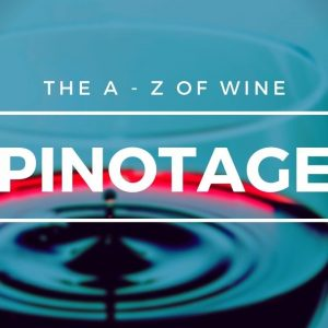What is PINOTAGE? - Everything you need to know about this popular South African grape