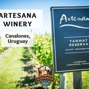 Artesana -  Handcrafted Quality in your Glass
