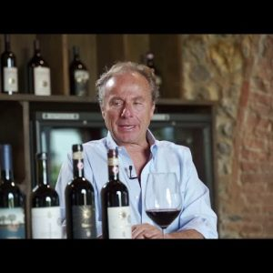 Behind the Wine: Bacci Wines