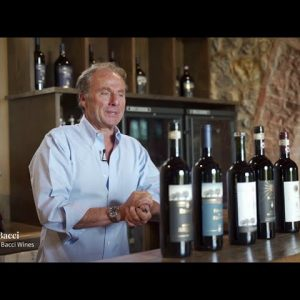Behind the Wine: Renieri Invetro, Total Wine & More's #1 Wine of 2020