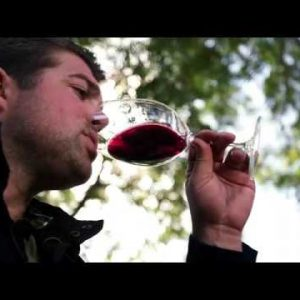 Behind the Wine: Vennstone