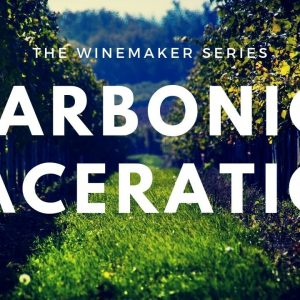 Carbonic Maceration - Wine making process and Beaujolais tasting