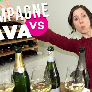Cava vs. Champagne (Save $ Drink Smart!)