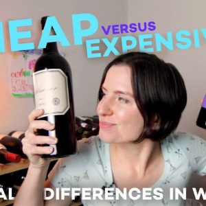 Cheap vs Expensive Wine - What You're Missing