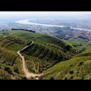 Discover Wines of the Rhone Valley, Part 1 of 3.mov