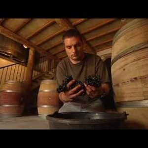 Discover Wines of the Rhone Valley, Part 3 of 3.mov