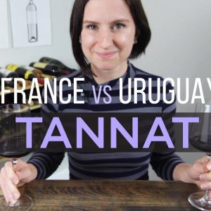 France vs Uruguay Tannat Wine