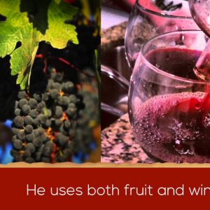 Fulcrum Wines presented by The California Wine Club (VIDEO)
