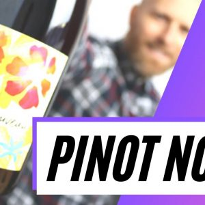 What is PINOT NOIR - Everything you need to know about this popular grape