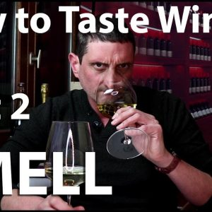 How to Taste Wine? Sniff & Smell