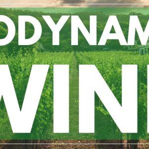 What is BIODYNAMIC WINE - Understanding the Biodynamic Vineyard and Winemaking practices