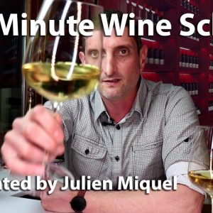 Julien's Wine School - Fun Learning!