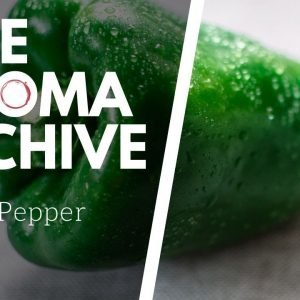 The Smell of GREEN BELL PEPPER in Wine - The Aroma Archive Ep8 - Green Bell Pepper
