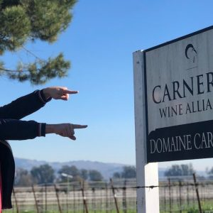 LOS CARNEROS AVA - Napa Valley Sub-Appellation Series 1/16