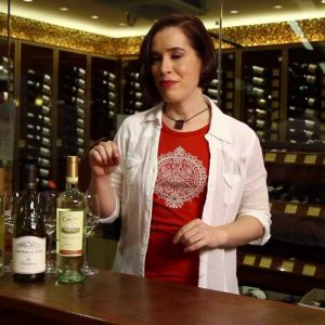 Riesling, Sauvignon Blanc, Chardonnay, Pinot Grigio, Pinot Gris - White Wine Guide