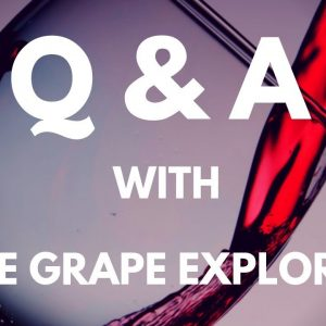 Q&A with The Grape Explorer