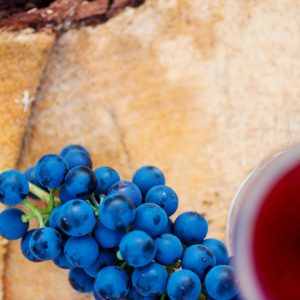 Quotations About Wine