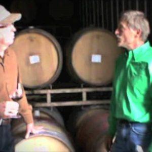 """Castoro Winery - Discovering """"dam fine wine"""" at Paso Robles Castoro's Cellars!"""