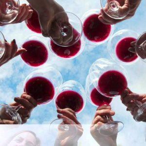 The California Wine Club Introduces Cambridge Cellars
