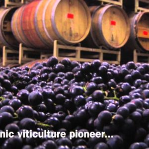 The California Wine Club Introduces Sunstone Winery