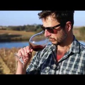 The New Bannockburn: An Interview with Winemaker Matt Holmes
