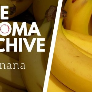 The Smell of BANANA in Wine - The Aroma Archive Ep4 - Banana