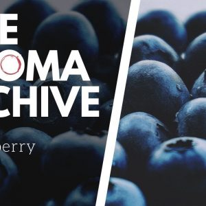 The Smell of BLUEBERRY in Wine - The Aroma Archive Ep25 - Blueberry