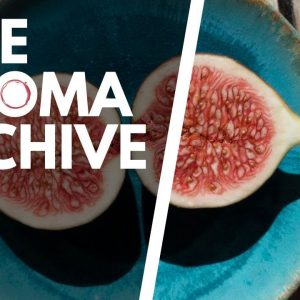 The Smell of FIGS in Wine - The Aroma Archive Ep7 - Fig