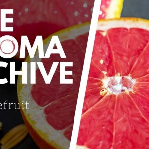 The Smell of GRAPEFRUIT in Wine - The Aroma Archive Ep21 - Grapefruit