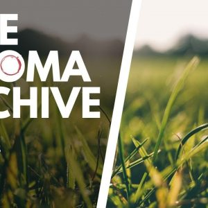 The Smell of GRASS in Wine - The Aroma Archive Ep27 - Grass