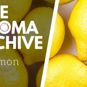 The Smell of LEMON in Wine - The Aroma Archive Ep.1 - Lemon