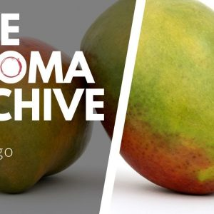 The Smell of MANGO in Wine - The Aroma Archive Ep23 - Mango