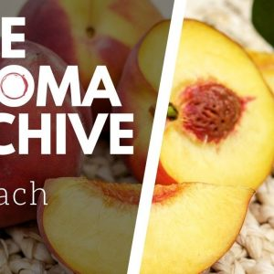 The Smell of PEACH in Wine - The Aroma Archive Ep3 - Peach