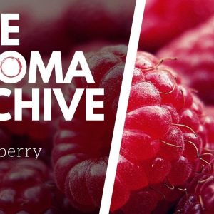 The Smell of RASPBERRY in Wine - The Aroma Archive Ep24 - Raspberry