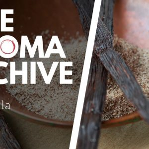 The Smell of VANILLA in Wine - The Aroma Archive Ep14 - Vanilla