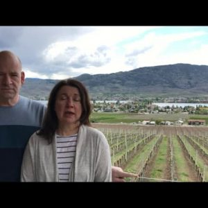 Unusual Varietals Show Off Top Terroir at Moon Curser Vineyards