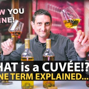 What is a Cuvée? Wine Term Explained | Let's NOT STOP Sharing about VINO