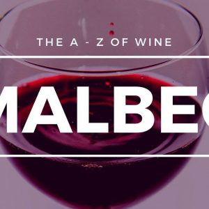 What is MALBEC - What you need to know about this popular grape.