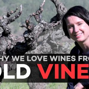 What's The Deal With Old Vine Wines?