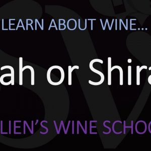 What's the DIFFERENCE between Shiraz & Syrah? Origin of the Grape & Wine