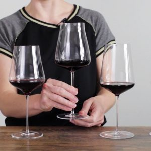 Wine Folly Tested: The Best Red Wine Glasses