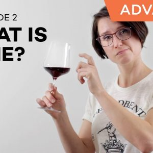 Wine Folly: What is Wine? Part 2 (Ep. 2)