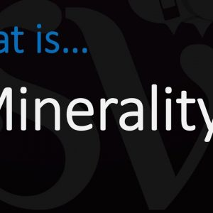 WTF is MINERALITY? Everything you need to know about this wine term!