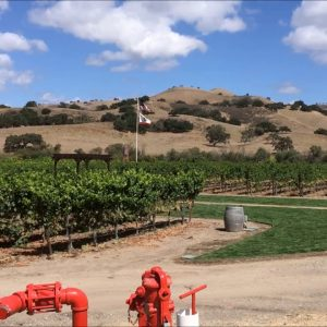 Zaca Mesa Vineyards and Winery  the View from the Tasting Room