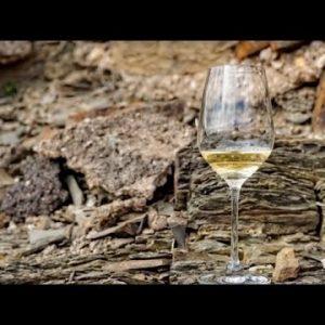 Live Wine Tasting: Minerality