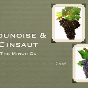 Winecast: Counoise & Cinsaut