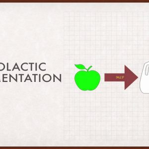 Winecast: Malolactic Fermentation