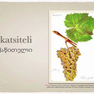 Winecast: Rkatsiteli